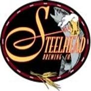 steellogo